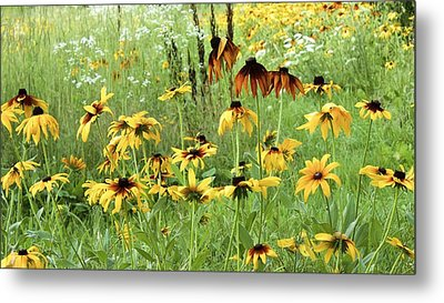 Beautiful The Way It Is Metal Print by Colleen Williams