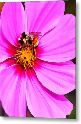 Bee On Pink Metal Print by Bill Caldwell -        ABeautifulSky Photography