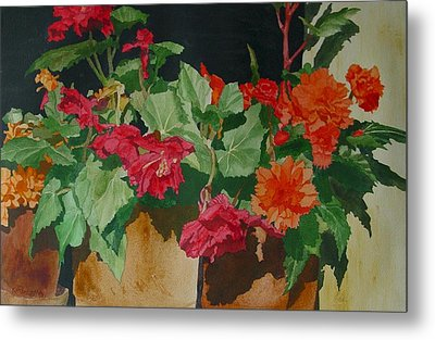 Begonias Flowers Colorful Original Painting Metal Print by K Joann Russell