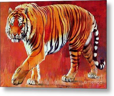 Bengal Tiger  Metal Print by Mark Adlington