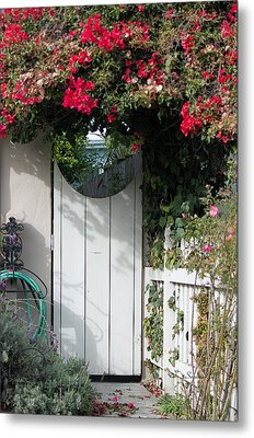 Beyond The Garden Gate Metal Print by Suzanne Gaff