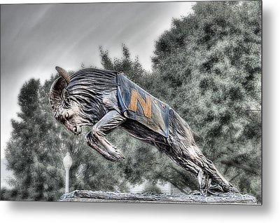 Bill The Goat Bw Metal Print by JC Findley