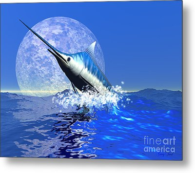 Billfish  Metal Print by Corey Ford