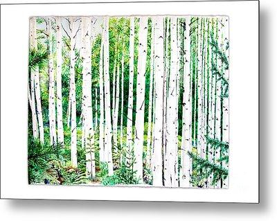Birch Trees Metal Print by Jennifer Apffel