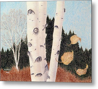 Birches Metal Print by Betsy Gray Bell