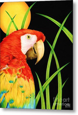 Bird In Paradise Metal Print by Sheryl Unwin