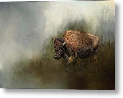 Bison After The Mud Bath Metal Print by Jai Johnson