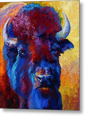 Bison Boss Metal Print by Marion Rose