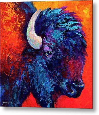 Bison Head Color Study II Metal Print by Marion Rose