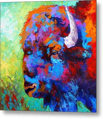 Bison Head II Metal Print by Marion Rose