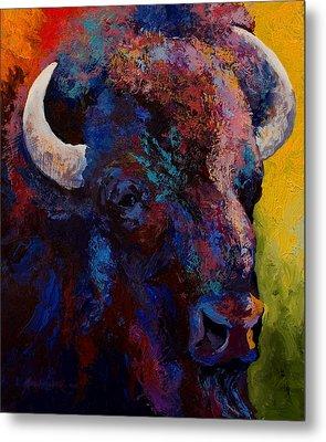 Bison Head Study Metal Print by Marion Rose