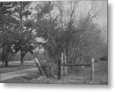 Black And White Country Scene Metal Print by Nancy Stutes