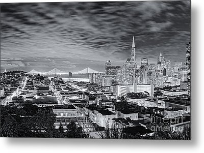 Black And White Panorama Of San Francisco Skyline And Oakland Bay Bridge From Ina Coolbrith Park  Metal Print by Silvio Ligutti