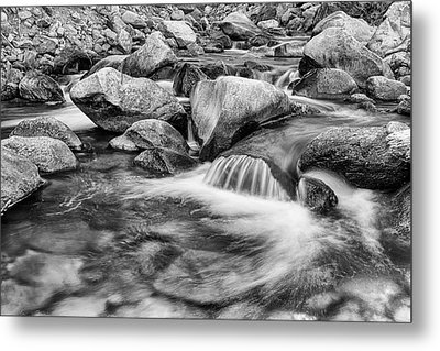 Black And White Peaceful Stream Metal Print by James BO Insogna