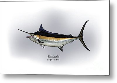Black Marlin Metal Print by Ralph Martens