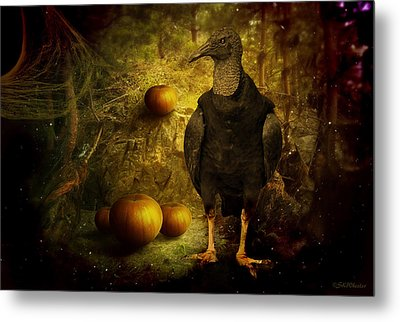 Black Vulture Sentry Metal Print by Sabrina K Wheeler