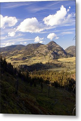 Blacktail Road Landscape Metal Print by Marty Koch