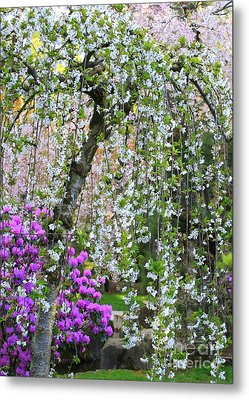 Blossoms Galore Metal Print by Carol Groenen