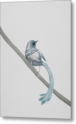Blue 2 Metal Print by Diego Fernandez