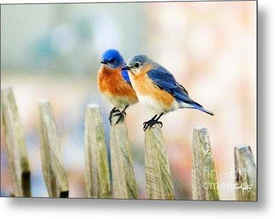 Blue Birds Metal Print by Scott Pellegrin