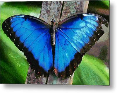 Blue Butterfly  - Monet Style -  - Da Metal Print by Leonardo Digenio
