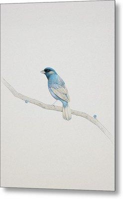 Blue Metal Print by Diego Fernandez
