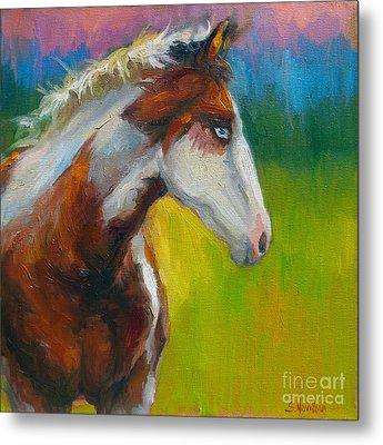 Blue-eyed Paint Horse Oil Painting Print Metal Print by Svetlana Novikova