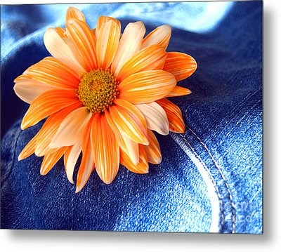 Blue Jeans And Daisies Metal Print by Wendy Mogul