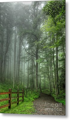 Blue Ridge - Trees In Fog Country Road I Metal Print by Dan Carmichael