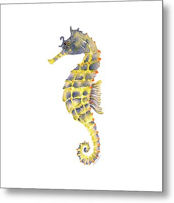 Blue Yellow Seahorse - Square Metal Print by Amy Kirkpatrick