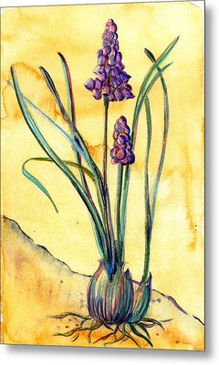 Bluebells Metal Print by Mindy Newman