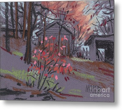 Blueberry Bush In Fall Metal Print by Donald Maier