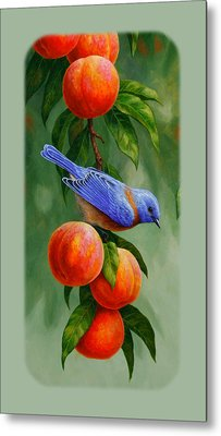 Bluebird And Peach Tree Iphone Case Metal Print by Crista Forest