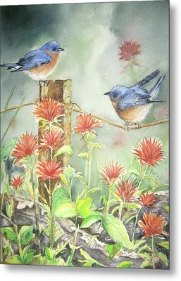 Bluebirds And Indian Paintbrush Metal Print by Patricia Pushaw