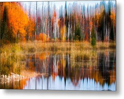 Blurred Golden Autumn Palette Of Birch Metal Print by Jeff Folger