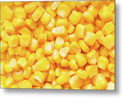 Boiled Corn Seeds Metal Print by Vadim Goodwill