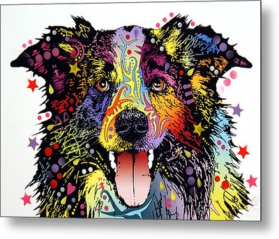 Border Collie 2 Metal Print by Dean Russo