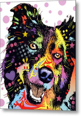 Border Collie Metal Print by Dean Russo