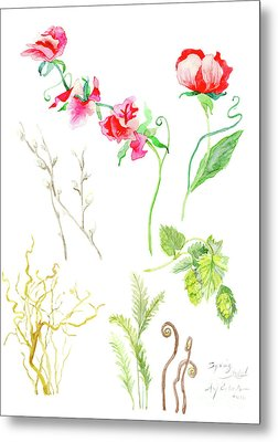 Botanical Nature - Spring Study 1 Metal Print by Audrey Jeanne Roberts