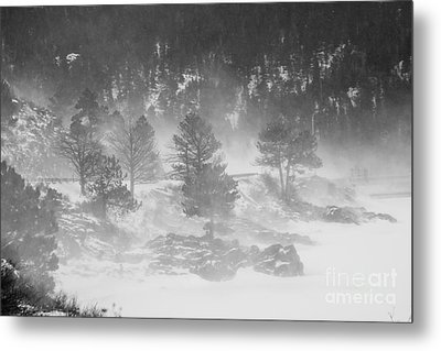 Boulder Canyon And Nederland Winter Landscape Metal Print by James BO  Insogna