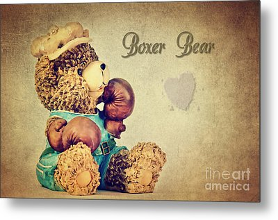 Boxer Bear Metal Print by Angela Doelling AD DESIGN Photo and PhotoArt