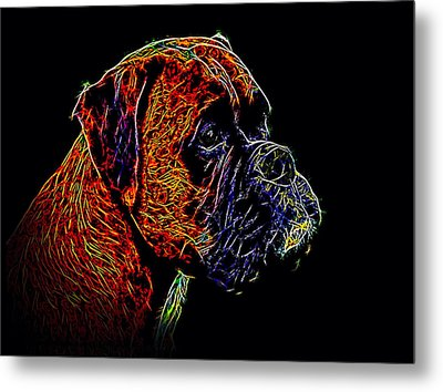Boxer Dog Metal Print by Alexey Bazhan