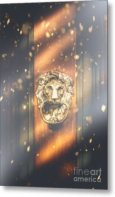 Brave The Cold Metal Print by Jorgo Photography - Wall Art Gallery