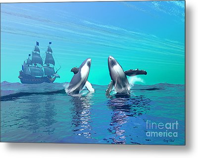Breaching Metal Print by Corey Ford