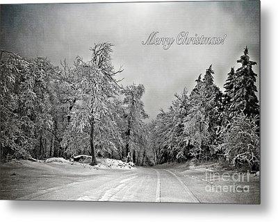 Break In The Storm Christmas Card Metal Print by Lois Bryan