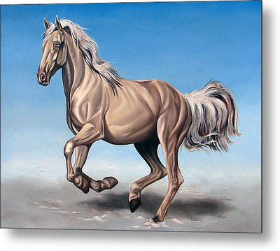 Breeze Metal Print by Ilse Kleyn