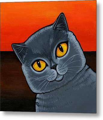 British Shorthair Metal Print by Leanne Wilkes