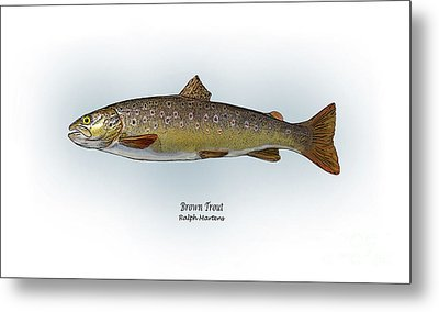 Brown Trout Metal Print by Ralph Martens