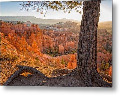 Bryce Canyon National Park Sunrise 2 - Utah Metal Print by Brian Harig