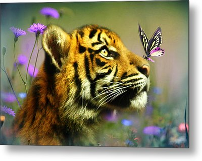 Buddy And The Butterfly Metal Print by Trudi Simmonds